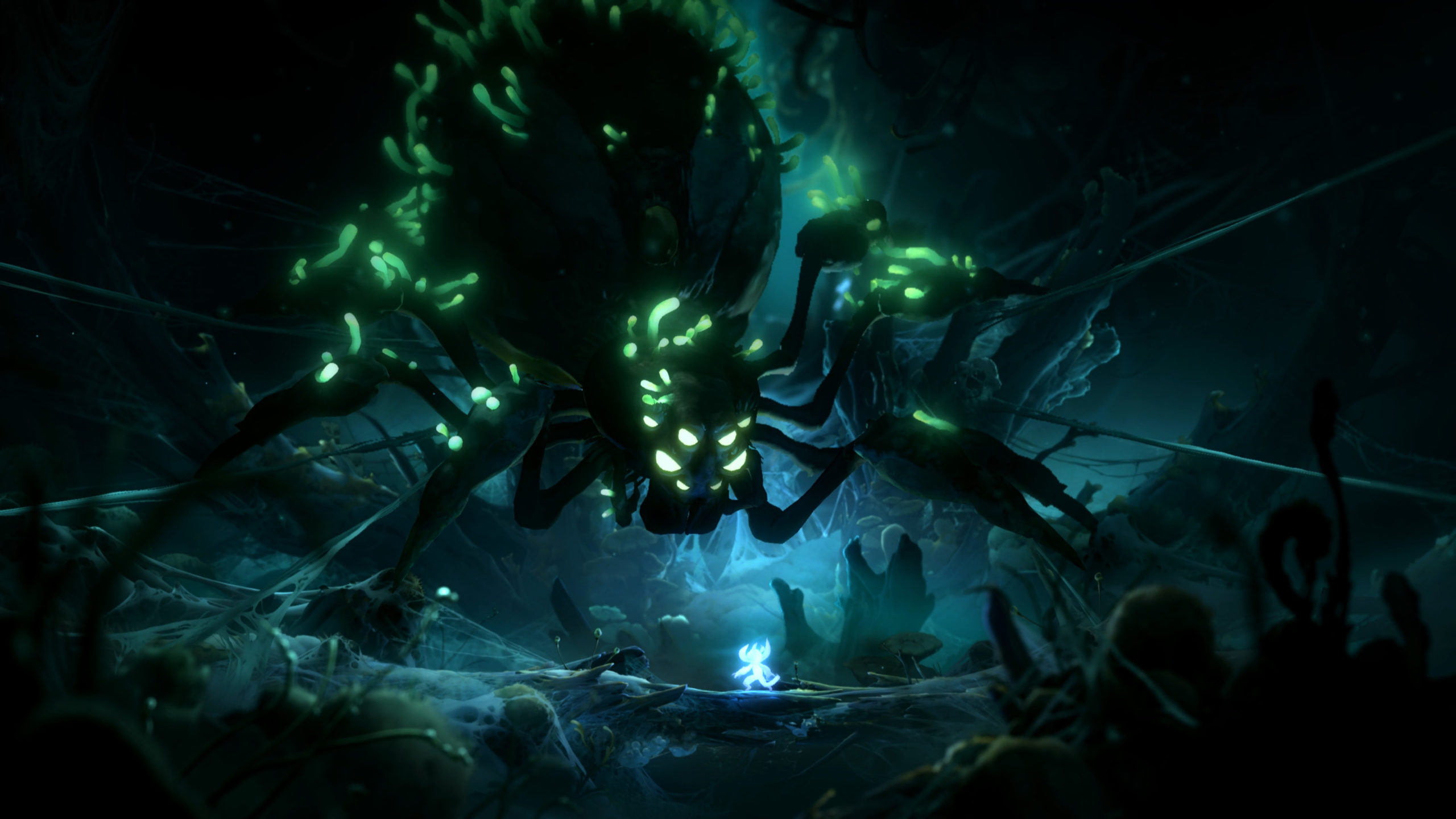 Ori and the Will of the Wisps Spinne