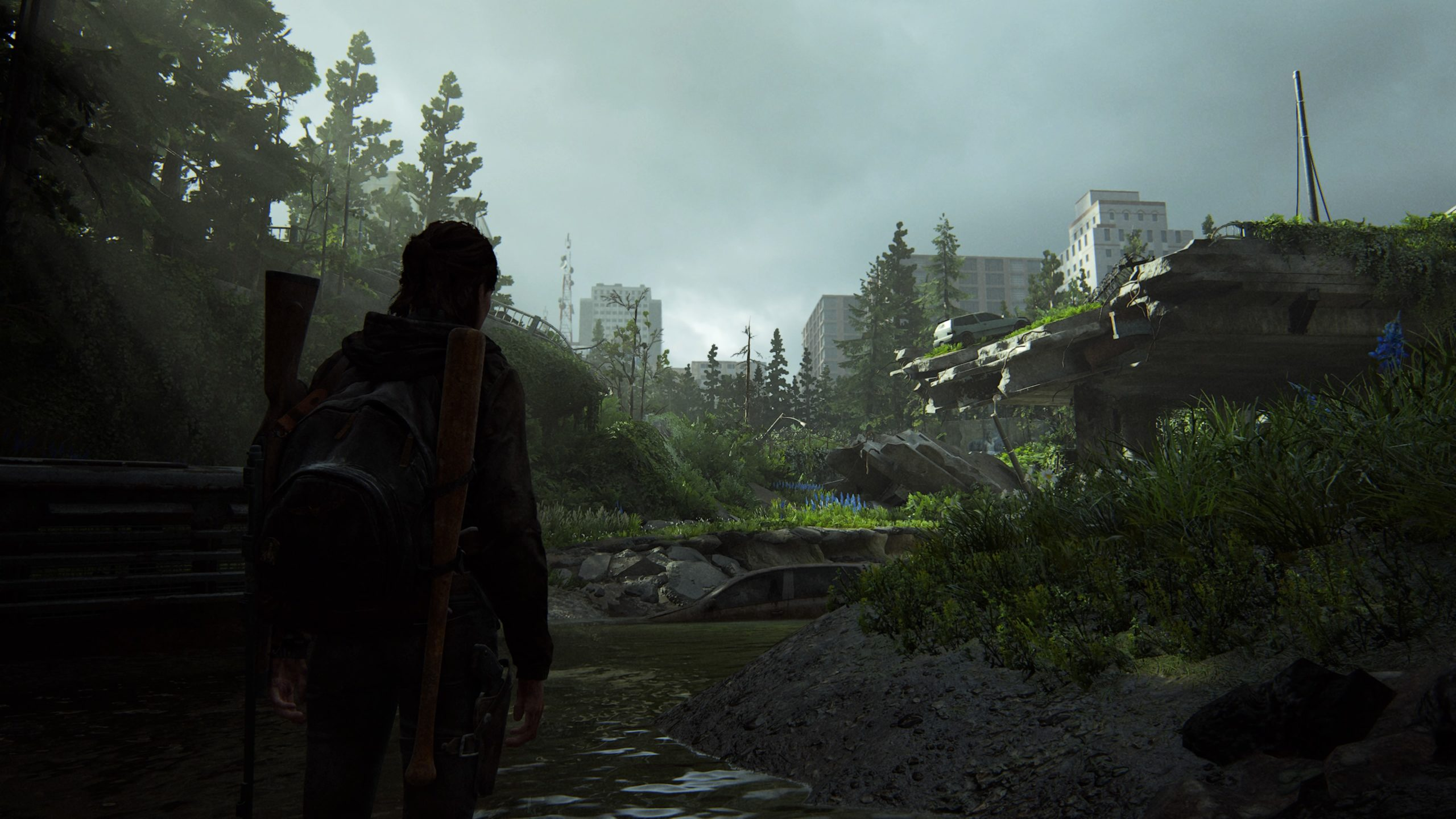 In The Last of Us 2 führt uns Ellies Reise ins unwirtliche Seattle